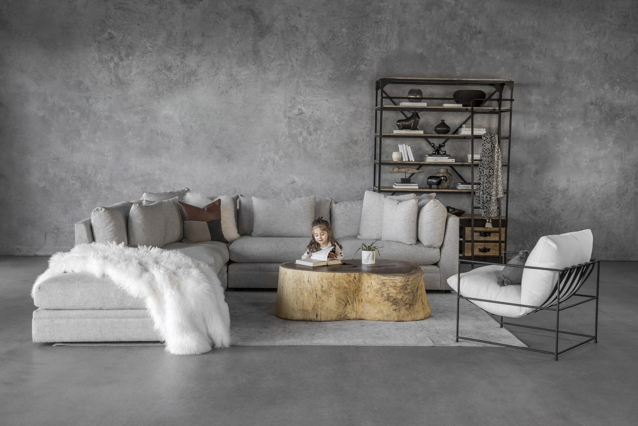 Bradford Sectional, Rug, Live Coffee Table, Accent Chair
