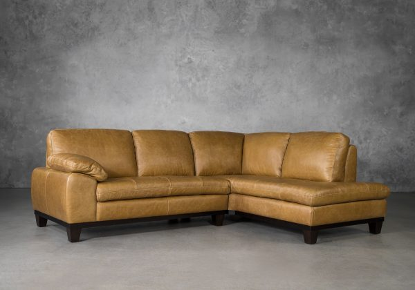 Logan Sectional SR in Camel Leather, Angle