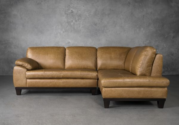 Logan Sectional SR in Camel Leather, Front