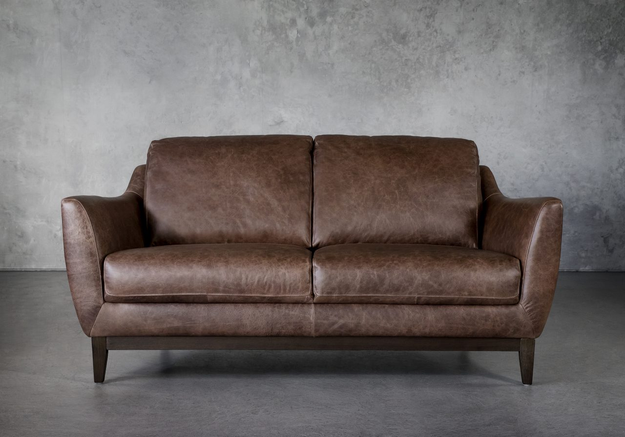 Seth Loveseat in Brown Leather, Front