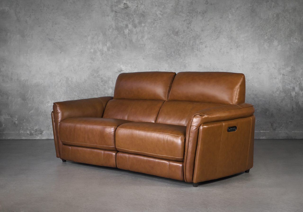 Clark Loveseat and Power Recliner, Angle